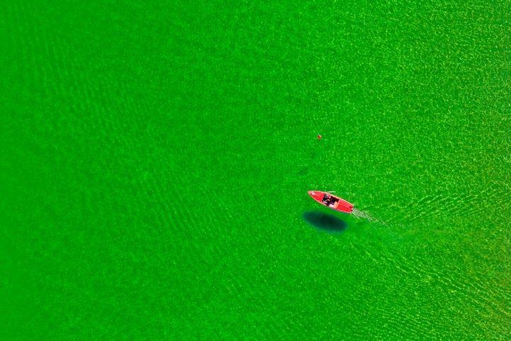 Luftaufnahme von einem roten Treetboot im gr¸nen See.