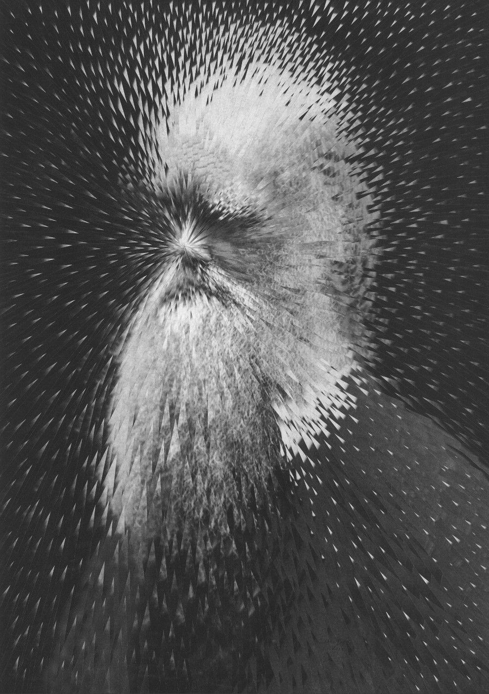 exploding-charles-darwin-lola-dupre