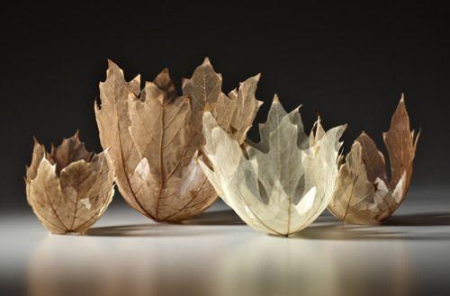 leafbowlsculpture05