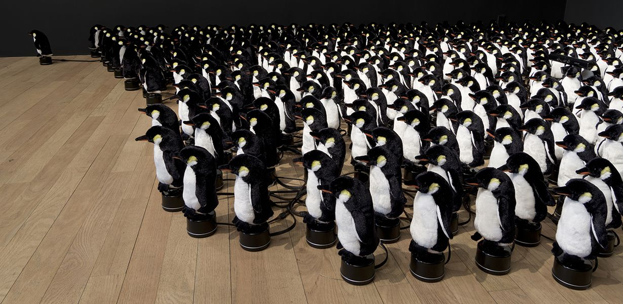 dr_penguins_23-w